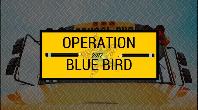 Operation Blue Bird 2